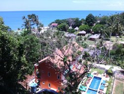 Pets-friendly hotels in Lamai Beach