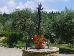 Pets-friendly hotels in Barberino Val d'Elsa