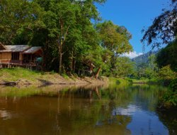 Khao Sok hotels with river view