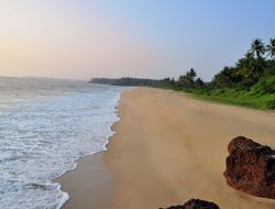 Pets-friendly hotels in Kannur