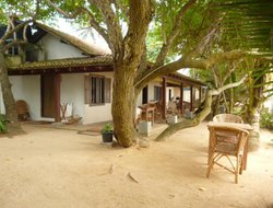 Pets-friendly hotels in Mirissa North