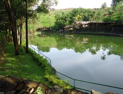 Vagamon hotels with restaurants
