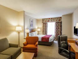 Pets-friendly hotels in Tolleson