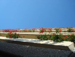 Livorno hotels with sea view