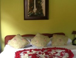 Pets-friendly hotels in Banos