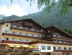 Pets-friendly hotels in Maurach