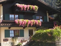 Pets-friendly hotels in Mayrhofen