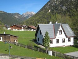 Pets-friendly hotels in Pertisau
