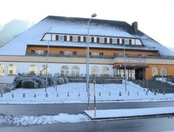 Pets-friendly hotels in Semmering