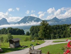 Pets-friendly hotels in St. Wolfgang
