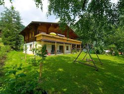 Pets-friendly hotels in Wagrain