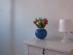 Pets-friendly hotels in Svendborg