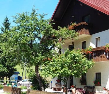 Apartments & Rooms Smucka