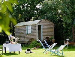 Pets-friendly hotels in Frome