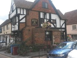 Pets-friendly hotels in Midhurst