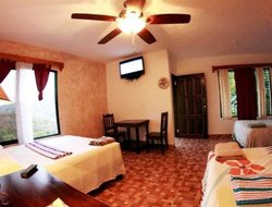 Pets-friendly hotels in Honduras