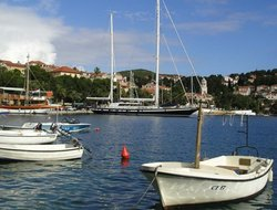 Pets-friendly hotels in Cavtat