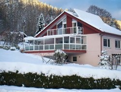 Pets-friendly hotels in Bad Wildbad im Schwarzwald