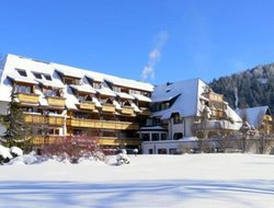 Hinterzarten hotels with swimming pool