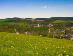 Pets-friendly hotels in Neuhausen