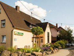 Pets-friendly hotels in Nuerburg