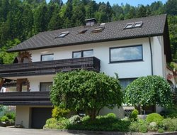Pets-friendly hotels in Oppenau