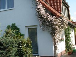 Pets-friendly hotels in Stralsund