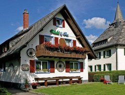 Top-4 hotels in the center of Titisee