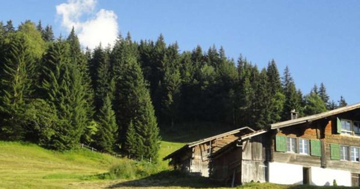 Chalet Aelpli Bed And Breakfast