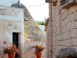 Pets-friendly hotels in Alberobello