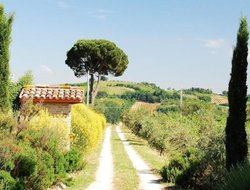 Pets-friendly hotels in Cesena