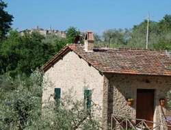 Pets-friendly hotels in Montepulciano