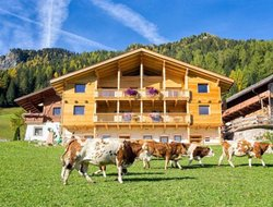 Pets-friendly hotels in Ortisei