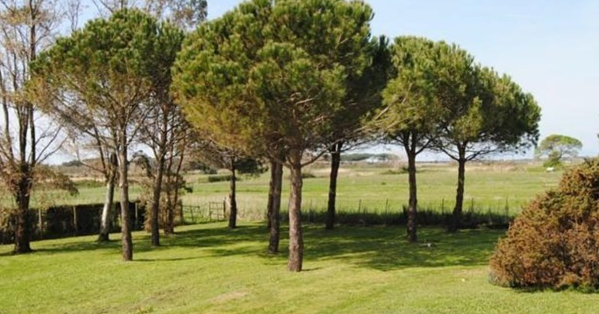 Holiday home Montalto di Castro-VT- 17