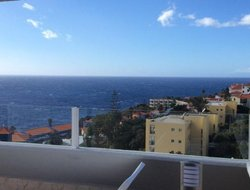 Pets-friendly hotels in Madeira Island