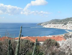 Pets-friendly hotels in Samos Town