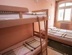Pets-friendly hotels in Novi Sad