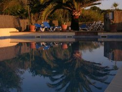 Pets-friendly hotels in Capdepera