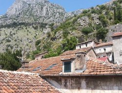 Pets-friendly hotels in Kotor
