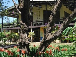 Pets-friendly hotels in Costa Rica