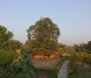Tiger Inn Resort Bandhavgarh