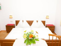 Pets-friendly hotels in Schladming
