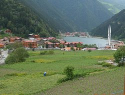 Uzungol hotels with lake view