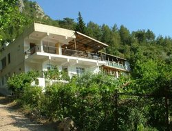 Pets-friendly hotels in Faralya