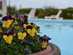 Lido di Fermo hotels with swimming pool