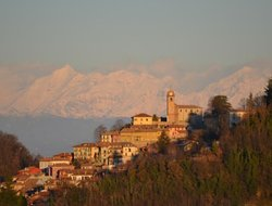 Pets-friendly hotels in Monforte
