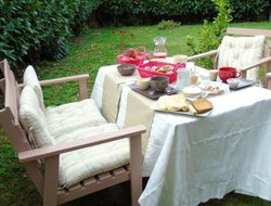 Pets-friendly hotels in Trevignano