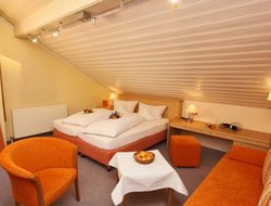 Pets-friendly hotels in Mittelberg