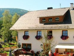 Pets-friendly hotels in Bacher