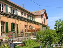 Pets-friendly hotels in Ribeauville